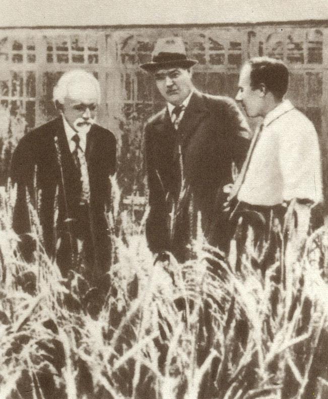Два направления в генетике [1989 Дубинин Н.П. - Вечное движение ...
